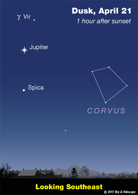 Jupiter, Spica, Corvus at dusk, April 2017