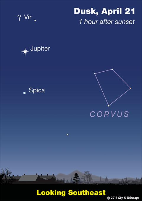 Jupiter, Spica, Corvus at dusk, April 2017