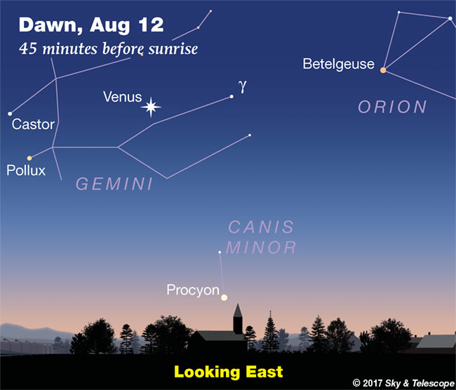 Venus in Gemini, week of Aug. 11-18, 2017
