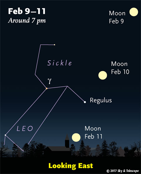 The February full Moon is always in (or near) Leo.