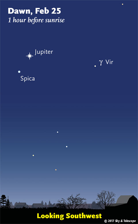 Jupiter and Spica in early dawn, late Feb. 2017