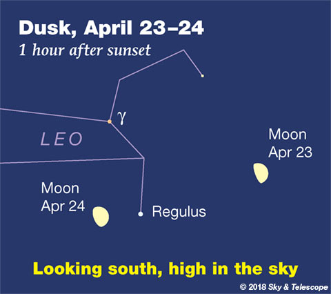 Moon and Regulus, April 23-24, 2018