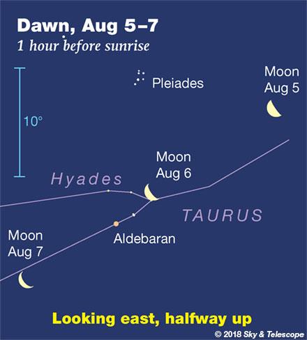 Moon, Pleiades, Aldebaran at dawn, August 5, 6, 7.