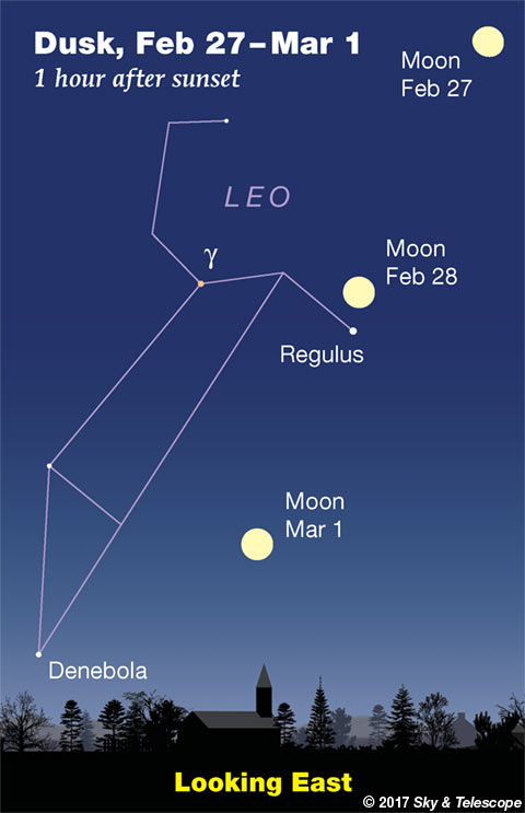 Moon, Regulus, and Sickle of Leo, Feb. 27 to March 1, 2018