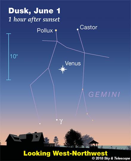 Venus below Castor and Pollux around June 1, 2018