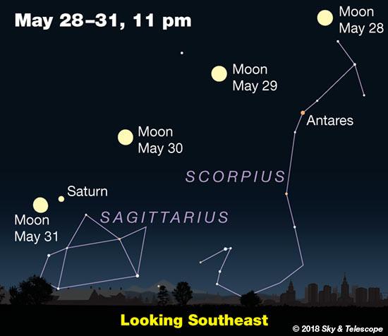 Moon, Antares, Saturn, May 28-31, 2018