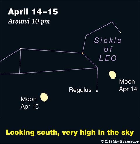 Moon under Leo, April 14-15, 2019