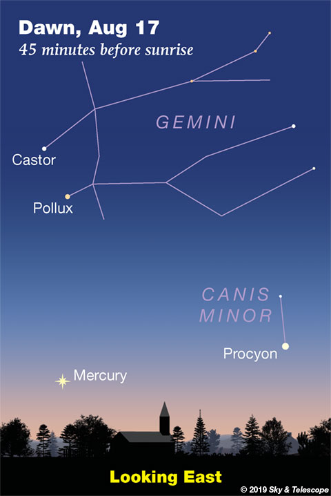 Find Mercury low in the dawn (mid-August 2019)