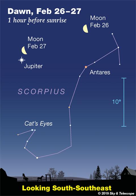 Moon, Jupiter, Antares at dawn, Feb. 26-27, 2019