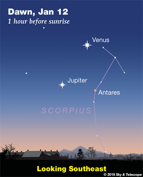 Venus, Jupiter, Antares in the dawn of Jan. 12, 2019