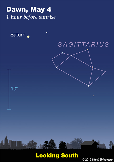 Saturn and Sagittarius in early dawn, late April and early May 2019