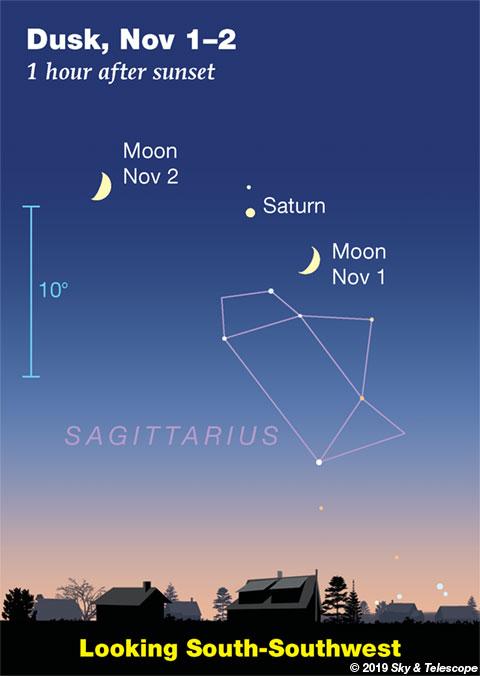 Moon and Saturn at dusk, Nov 1-2, 2019
