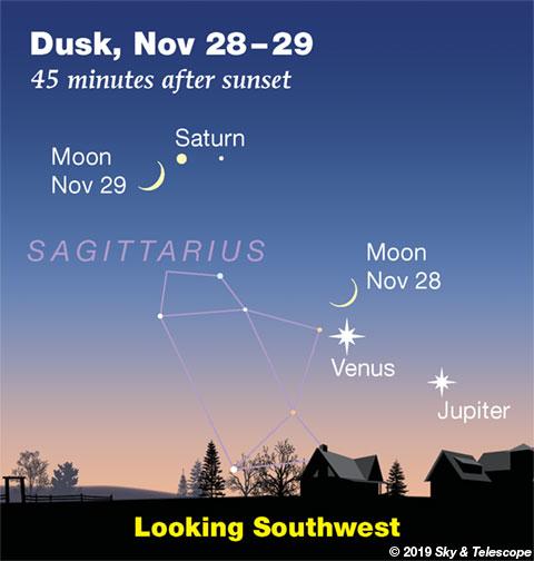Venus, Jupiter, Saturn, and Moon at dusk, Nov. 28-29, 2019