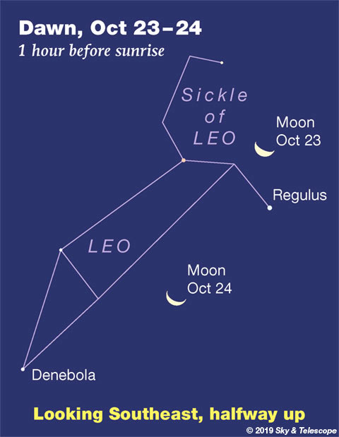 Waning Moon in Leo at dawn, Oct. 23-24, 2019