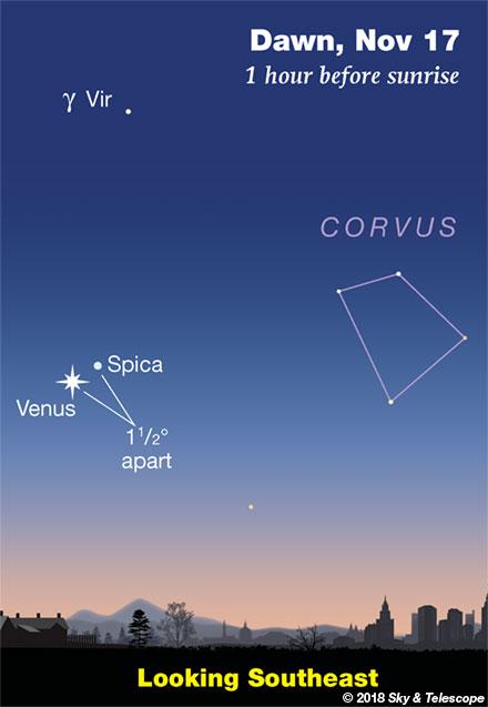 Venus and Spica at dawn, mid-November 2018