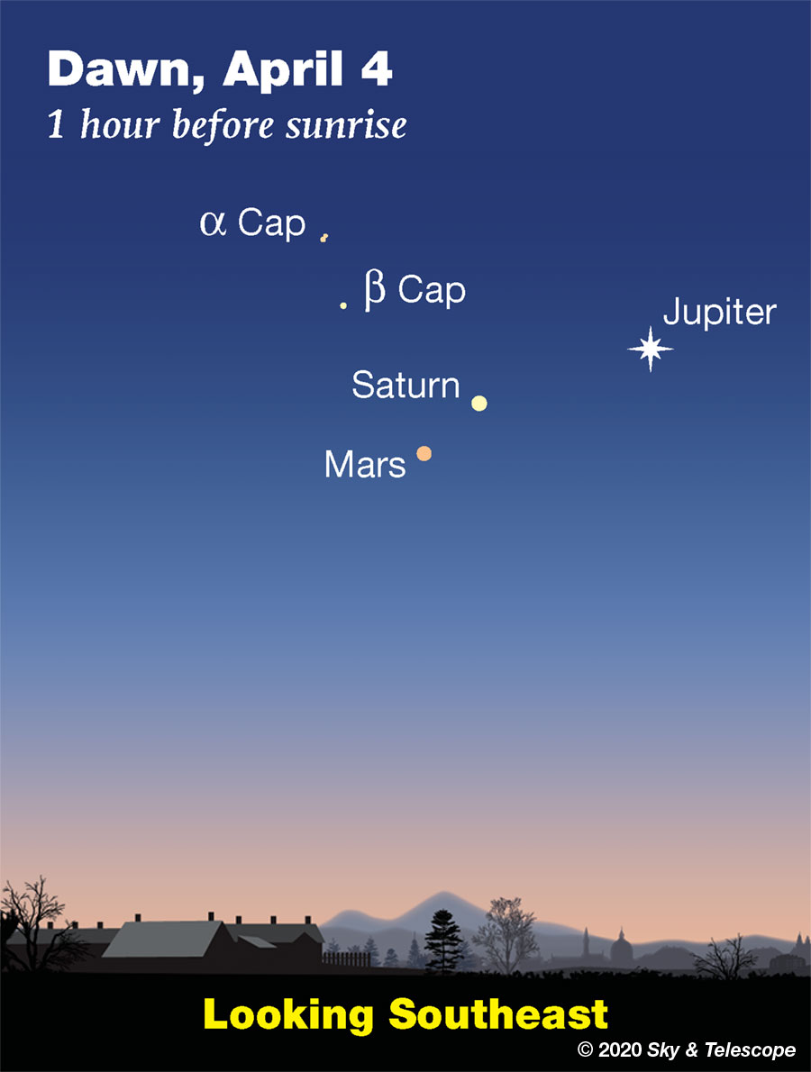 The three brightest outer planets keep each other company low in the southeast before and during early dawn. Bring binoculars to look for the tiny moons of Jupiter while the sky is still dark (they're very close in to its upper right and/or lower left), and to split the yellow double star Alpha Capricorni.