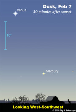 Venus and Mercury in twilight, early February 2020