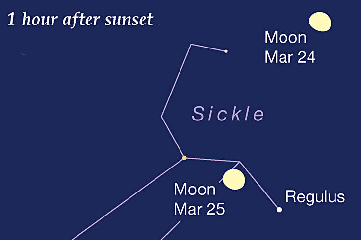 Moon and Regulus, March 24-25, 2021