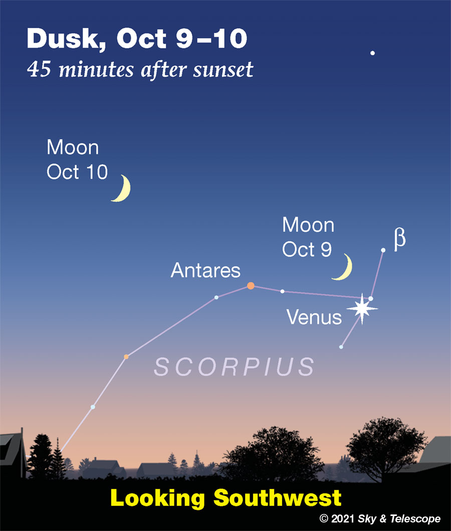 Crescent Moon with Venus in the head of Scorpius, Oct. 9, 2021