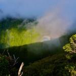 Waikolu Valley Glory