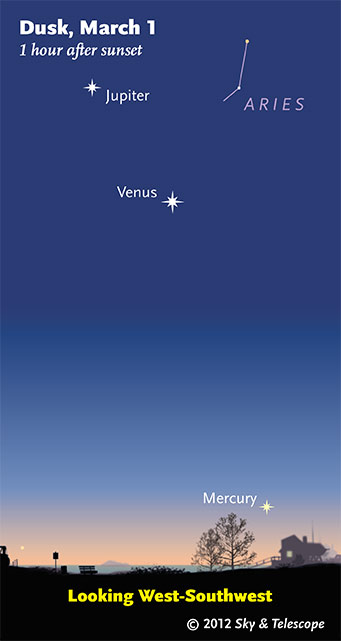 Bright Objects in the Night Sky include the Moon, Venus, Jupiter, Sirius, Mars, Mercury and Canopus!