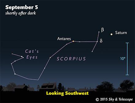 Saturn and Scorpius at nightfall, late August 2015
