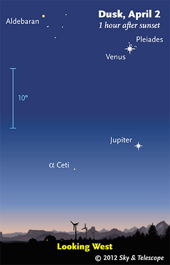 Planets and the Pleiades