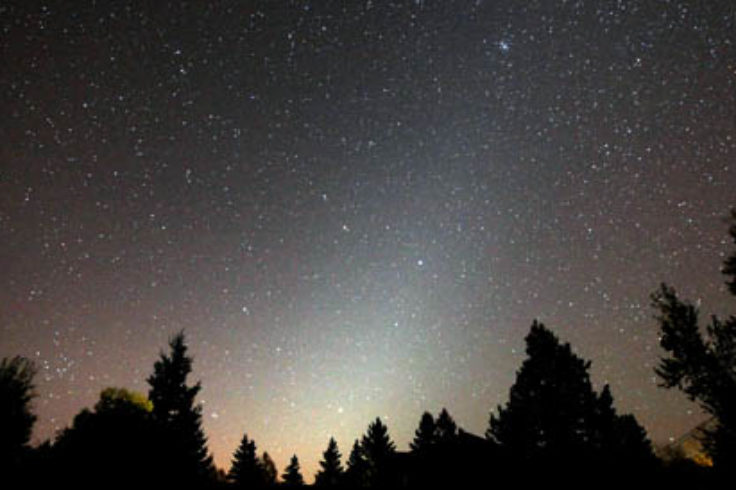 Cone of zodiacal light stretching into the sky from behind a dark silhouette of evergreen trees.