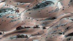"""""""Tree""""-like tendrils of dark sand on Mars"""