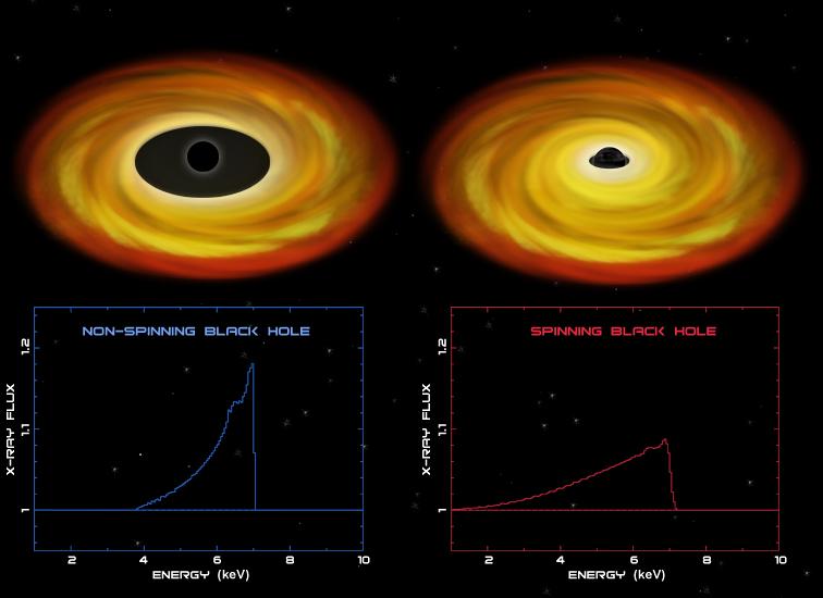Black hole spins
