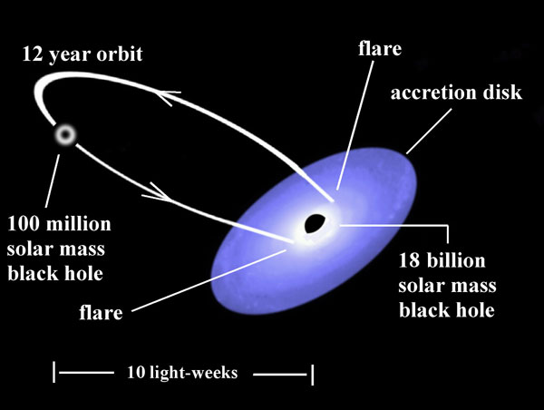 Mauri Valtonen and colleagues think the active galaxy OJ 287 contains two supermassive black holes in its nucleus, one of them possibly the most massive such object known in the universe. In the model pictured here, flares occur when the smaller black hole plunges through a disk of gas around the larger one twice during each 12-year orbit.Gary Poyner