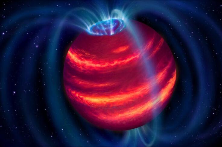 Brown dwarf aurorae