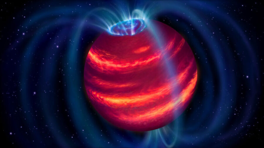 Brown dwarf aurorae