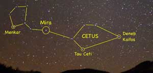 Cetus and Tau Ceti