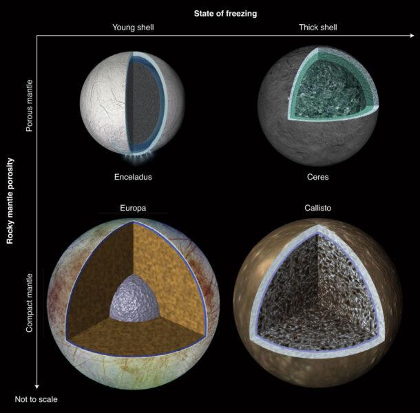 Comparing ocean worlds