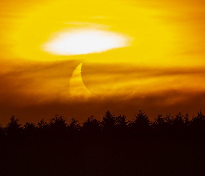 horned sunrise