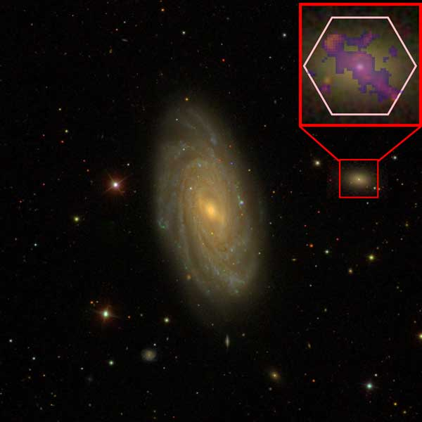 Dwarf galaxy experiences supermassive black hole feedback