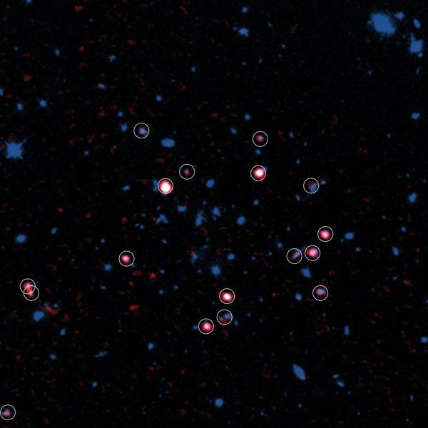 Galaxy Cluster with gas-rich galaxies