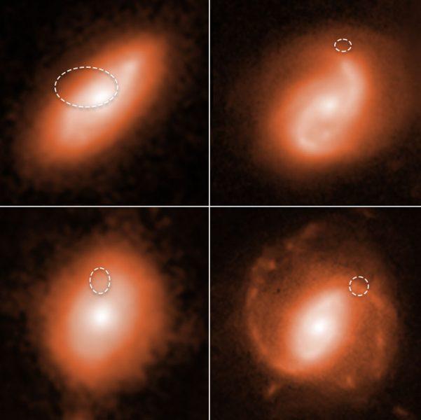 Spiral galaxies host Fast Radio Bursts