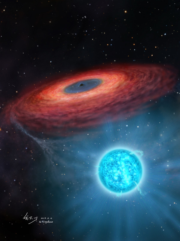 Star orbiting black hole