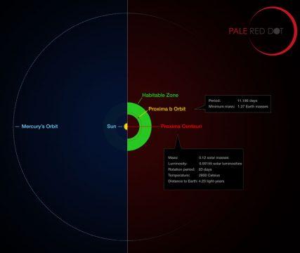 orbit of Proxima Centauri b