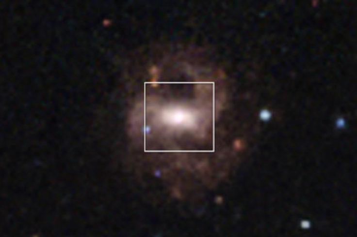 dwarf disk galaxy RGG 118