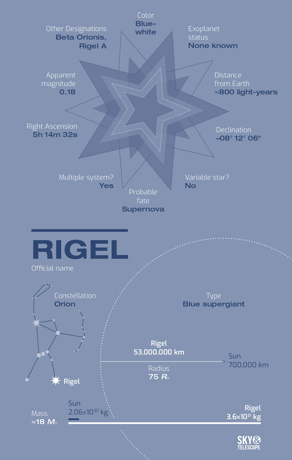 Meet Rigel, Orion's Blue Suede Shoe