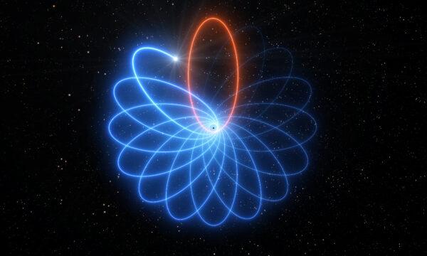 yıldız kara delik etrafında rozet çizer