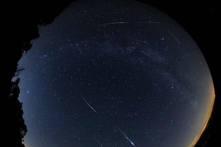 Fisheye Meteor Shower