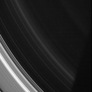 Picture of Saturn's D Ring