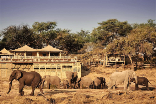 Savute Elephant Lodge as view from the waterhole