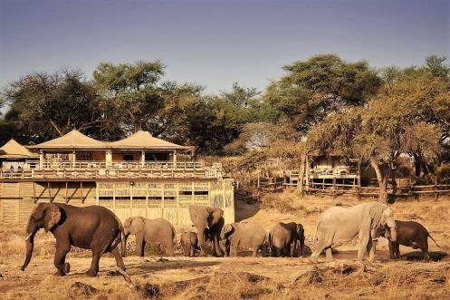 Savute Elephant Lodge as view from the waterhole