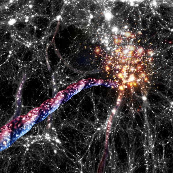 artists impression of purple filament growing out of bright galaxy cluster to form a web