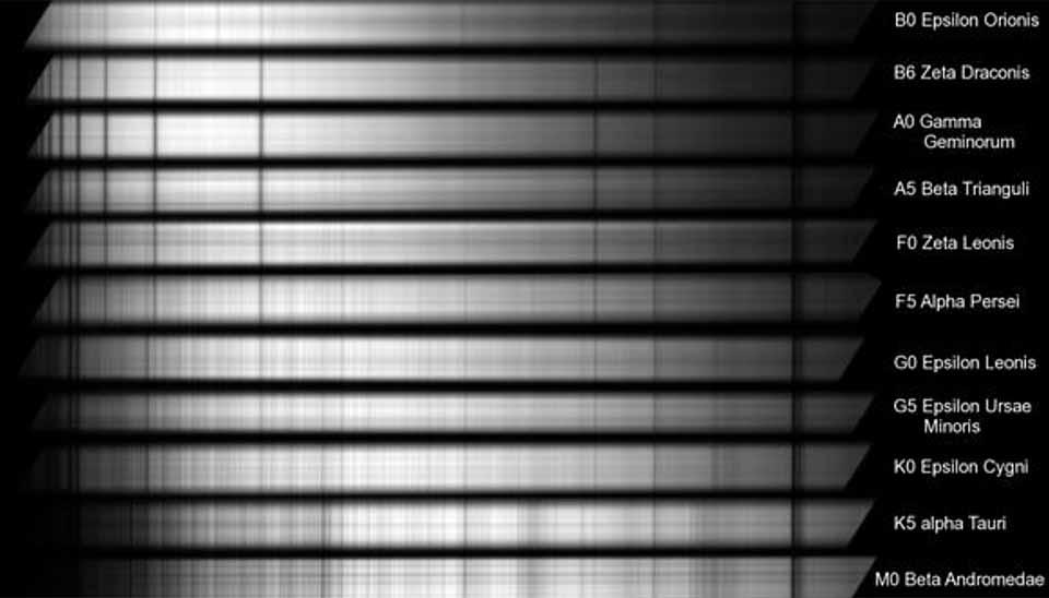Samples of stellar spectra